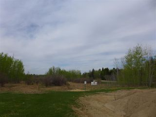 Photo 15: 50 Ave RR 281: Rural Wetaskiwin County Rural Land/Vacant Lot for sale : MLS®# E4191216