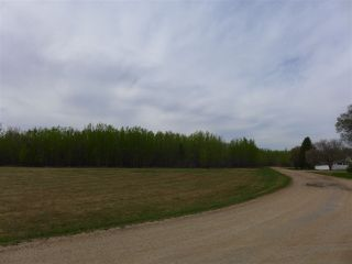 Photo 7: 50 Ave RR 281: Rural Wetaskiwin County Rural Land/Vacant Lot for sale : MLS®# E4191216