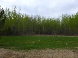 Photo 13: 50 Ave RR 281: Rural Wetaskiwin County Rural Land/Vacant Lot for sale : MLS®# E4191216
