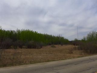 Photo 16: 50 Ave RR 281: Rural Wetaskiwin County Rural Land/Vacant Lot for sale : MLS®# E4191216
