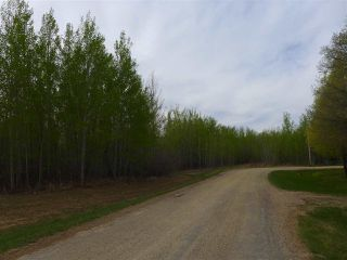 Photo 9: 50 Ave RR 281: Rural Wetaskiwin County Rural Land/Vacant Lot for sale : MLS®# E4191216