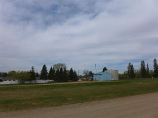 Photo 11: 50 Ave RR 281: Rural Wetaskiwin County Rural Land/Vacant Lot for sale : MLS®# E4191216