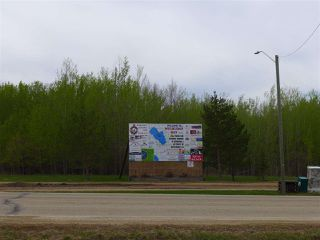 Photo 12: 50 Ave RR 281: Rural Wetaskiwin County Rural Land/Vacant Lot for sale : MLS®# E4191216