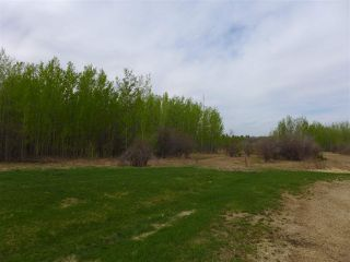 Photo 14: 50 Ave RR 281: Rural Wetaskiwin County Rural Land/Vacant Lot for sale : MLS®# E4191216