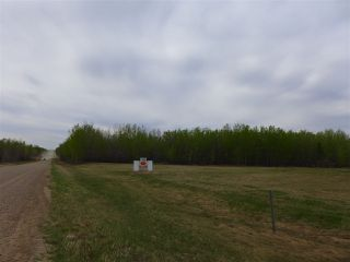 Photo 3: 50 Ave RR 281: Rural Wetaskiwin County Rural Land/Vacant Lot for sale : MLS®# E4191216