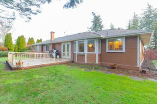 Photo 33: 4982 Del Monte Ave in : SE Cordova Bay House for sale (Saanich East)  : MLS®# 862203
