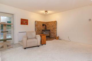 Photo 17: 4982 Del Monte Ave in : SE Cordova Bay House for sale (Saanich East)  : MLS®# 862203