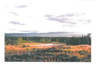 """Photo 13: LOT 12 BELL Place in Mackenzie: Mackenzie -Town Land for sale in """"BELL PLACE"""" (Mackenzie (Zone 69))  : MLS®# N227305"""