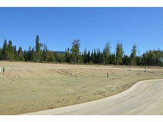 """Photo 20: LOT 12 BELL Place in Mackenzie: Mackenzie -Town Land for sale in """"BELL PLACE"""" (Mackenzie (Zone 69))  : MLS®# N227305"""