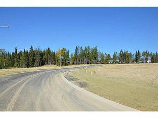 """Photo 3: LOT 12 BELL Place in Mackenzie: Mackenzie -Town Land for sale in """"BELL PLACE"""" (Mackenzie (Zone 69))  : MLS®# N227305"""