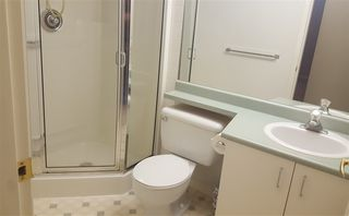 Photo 15: 305 15140 29A AVENUE in Surrey: King George Corridor Condo for sale (South Surrey White Rock)  : MLS®# R2320520