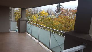 Photo 12: 305 15140 29A AVENUE in Surrey: King George Corridor Condo for sale (South Surrey White Rock)  : MLS®# R2320520