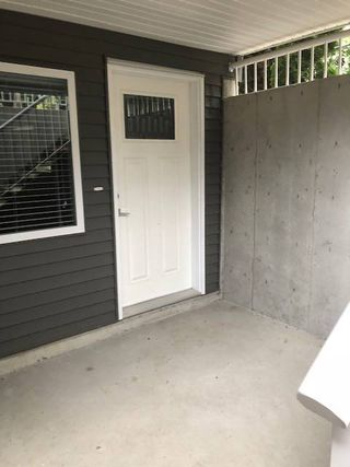 Main Photo: 10512 245Th Street in Maple Ridge: Residential Attached for rent