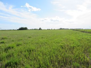 Photo 11: 0 PTH 15 Highway in Dugald: RM Springfield Vacant Land for sale (R04)  : MLS®# 202016001