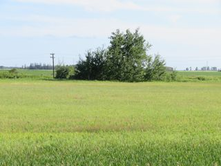 Photo 3: 0 PTH 15 Highway in Dugald: RM Springfield Vacant Land for sale (R04)  : MLS®# 202016001