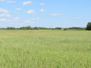 Photo 13: 0 PTH 15 Highway in Dugald: RM Springfield Vacant Land for sale (R04)  : MLS®# 202016001
