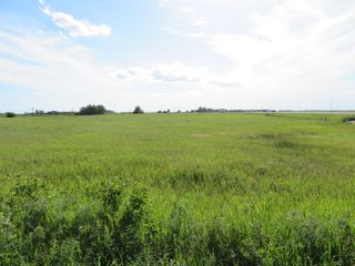 Photo 12: 0 PTH 15 Highway in Dugald: RM Springfield Vacant Land for sale (R04)  : MLS®# 202016001