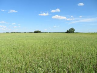 Photo 1: 0 PTH 15 Highway in Dugald: RM Springfield Vacant Land for sale (R04)  : MLS®# 202016001