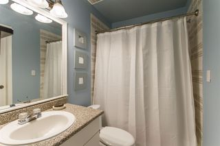 Photo 14: 3758 COAST MERIDIAN Road in Port Coquitlam: Oxford Heights House for sale : MLS®# R2420873