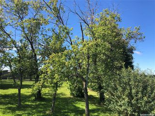 Photo 5: 501 503 Macmillan Street in Hudson Bay: Lot/Land for sale : MLS®# SK800946