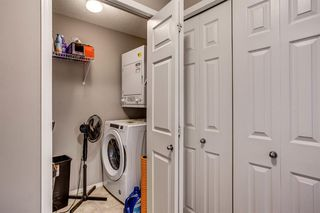 Photo 20: 3416 10 PRESTWICK Bay SE in Calgary: McKenzie Towne Apartment for sale : MLS®# A1014479
