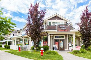 """Photo 31: 24080 HILL Avenue in Maple Ridge: Albion House for sale in """"Creeks Crossing"""" : MLS®# R2528169"""