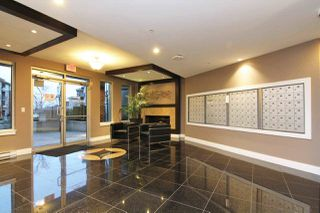 Photo 3: C114 20211 66 AVENUE in Langley: Willoughby Heights Condo for sale : MLS®# R2329502