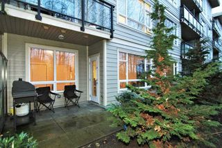 Photo 12: C114 20211 66 AVENUE in Langley: Willoughby Heights Condo for sale : MLS®# R2329502