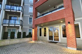 Photo 2: C114 20211 66 AVENUE in Langley: Willoughby Heights Condo for sale : MLS®# R2329502
