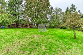 """Photo 13: 14676 55A Avenue in Surrey: Sullivan Station House for sale in """"Panorama East"""" : MLS®# R2408722"""