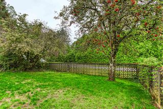 """Photo 15: 14676 55A Avenue in Surrey: Sullivan Station House for sale in """"Panorama East"""" : MLS®# R2408722"""