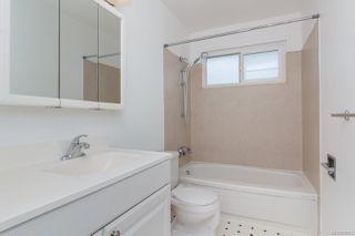 Photo 15: 4343 Cedar Hill Rd in : SE Mt Doug Single Family Detached for sale (Saanich East)  : MLS®# 850603
