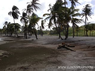 Photo 6: Bala Beach Resort - Panama Apartment on the Caribbean Sea
