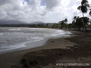 Photo 5: Bala Beach Resort - Panama Apartment on the Caribbean Sea