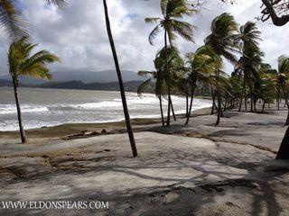 Photo 3: Bala Beach Resort - Panama Apartment on the Caribbean Sea