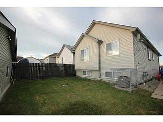 Photo 18: 29 TARACOVE Road NE in CALGARY: Taradale Residential Detached Single Family for sale (Calgary)  : MLS®# C3632615