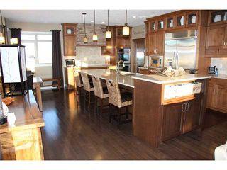 Photo 6: 104051 Sunset Hills BV: Rural Foothills M.D. CRES for sale : MLS®# C3648256