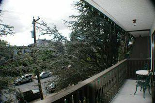 Photo 5: 307 2255 W 5TH AV in Vancouver: Kitsilano Condo for sale (Vancouver West)  : MLS®# V608269