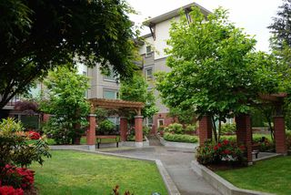 Photo 15: 402 33538 MARSHALL ROAD in Abbotsford: Central Abbotsford Condo for sale : MLS®# R2178045