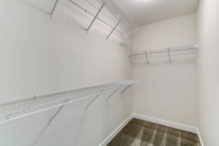 Photo 29: 4250 Chichak Close in Edmonton: Zone 55 House for sale : MLS®# E4178179