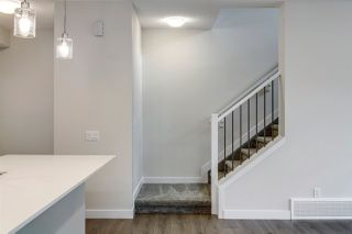 Photo 20: 4250 Chichak Close in Edmonton: Zone 55 House for sale : MLS®# E4178179