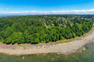 Photo 17: 1330 128 Street in Surrey: Crescent Bch Ocean Pk. Land for sale (South Surrey White Rock)  : MLS®# R2463675