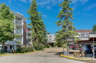 Main Photo: 335 4404 122 Street in Edmonton: Zone 16 Condo for sale : MLS®# E4205498
