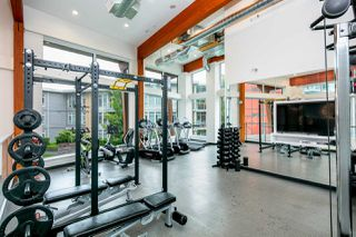 """Photo 23: 406 3263 PIERVIEW Crescent in Vancouver: South Marine Condo for sale in """"Rhythm"""" (Vancouver East)  : MLS®# R2480394"""