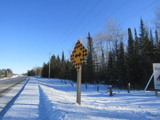 Photo 12: Heward Rd. in Fort Frances: Vacant Land for sale : MLS®# TB200316