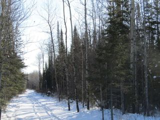 Photo 2: Heward Rd. in Fort Frances: Vacant Land for sale : MLS®# TB200316