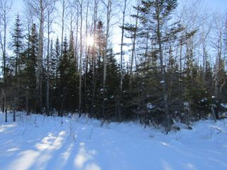 Photo 4: Heward Rd. in Fort Frances: Vacant Land for sale : MLS®# TB200316
