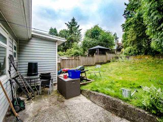 Photo 19: 341 BUCHANAN Avenue in New Westminster: Sapperton House for sale : MLS®# R2484390