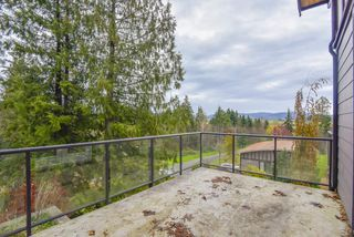 Photo 29: 8261 264 Street in Langley: County Line Glen Valley House for sale : MLS®# R2516200