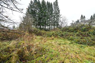 Photo 7: 1790 15th St in : CV Courtenay City Land for sale (Comox Valley)  : MLS®# 861041